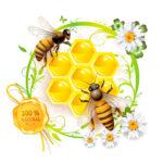 εκτύπωση αυτοκόλλητες ετικέτες για μέλι